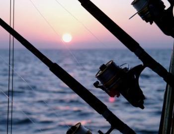 fishing charters grayton beach fl