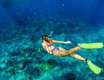 grayton beach snorkeling