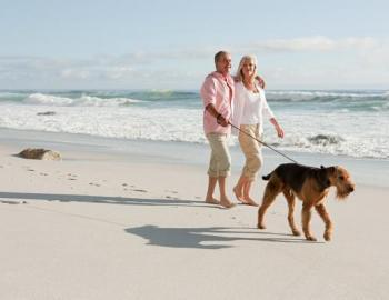 santa rosa beach dog rules
