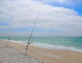 surf fishing in 30a